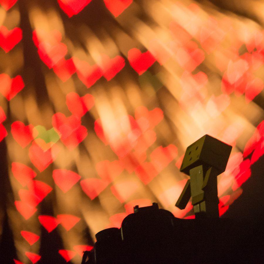 Danbo_enjoys_the_fireworks_of_LOVE_(7729344264)