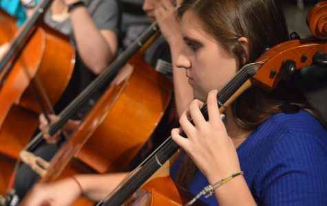 Orchestra members work hard to prepare for their first concert