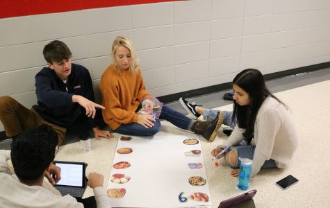AP Language and Composition students learn about Pop Culture